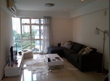 Room Available in Condo
