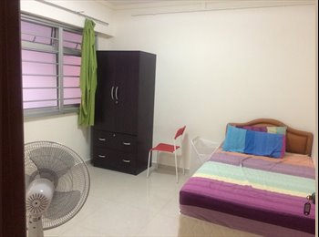 Clean common room for rent