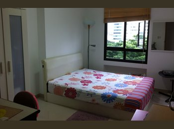Common Room near Toa Payoh MRT - ONE MONTH ONLY