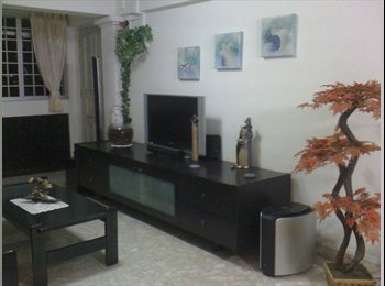 EasyRoommate SG - Comfort, Cozy, Big, Quiet & Convenient Common Room - Toa Payoh, Singapore - $800 pcm