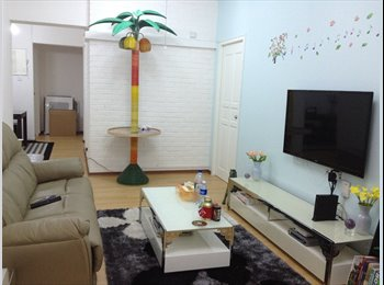 Spacious condo rooms for rent