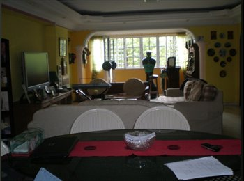 4 rooms for rent in an Executive Apartment