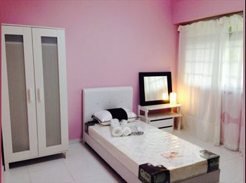 New clean and cozy room ( for female only)