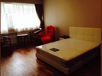 amazing master room available immidate