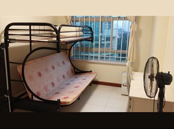 EasyRoommate SG - Common bedroom for rent - Punggol, Singapore - $650 pcm