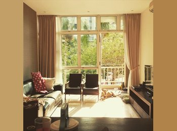 Looking for a third housemate in a beautiful condo