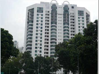 EasyRoommate SG - River Valley/Somerset Big common room, River Valley - $1,150 pcm