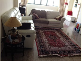 renting common room for single female