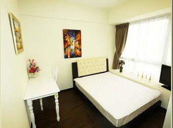Amazing wonderful common room available at Sophia
