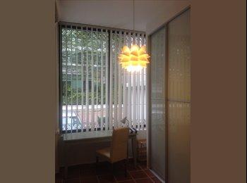 EasyRoommate SG - Master bedroom  Somerset MRT 10 mins walk to MRT - Orchard, Singapore - $1,700 pcm