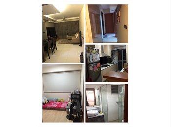 Common Room for Rent (Sengkang) No Agent