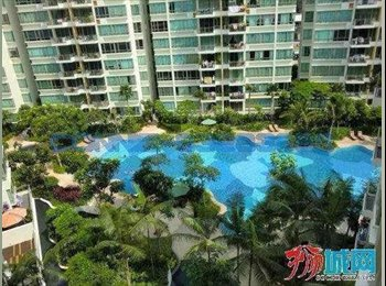 EasyRoommate SG - Big common room in a penthouse condo nearby Tanah Merah MRT - Bedok, Singapore - $1,300 pcm