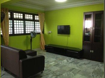 Apartment for rent NEAR Braddell MRT station! Toa payoh!
