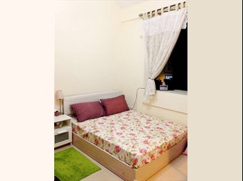 Big Single Room Available from 23 Aug Onwards