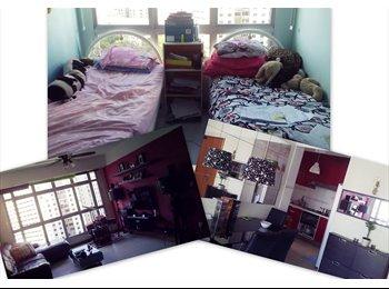 Room for Rent at Sengkang Compassvale lane (2-Filipina)