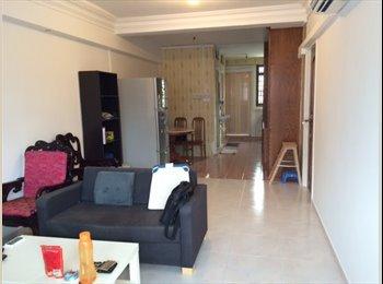 Chinatown HDB FLAT 2-bedrooms-Unit, Jalan Kukoh.