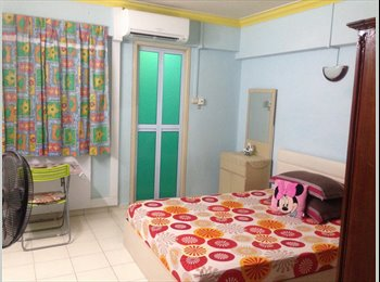 clean master room for rent AT BLK 390 YISHUN AVE 6
