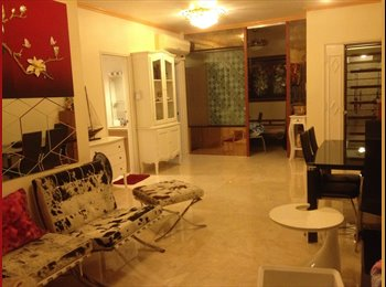 Room partition for rent near centre area