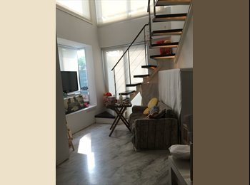 Nice loft living in Orchard area