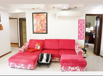 B) Room from Dover available for Rent (15th Apr 2016)