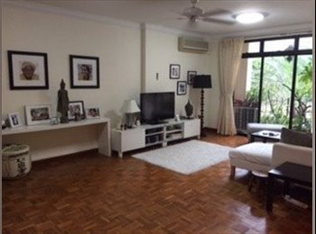 Novena 4-bedroom partially furnished apartment for rent