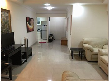 Room at CBD Central for rent