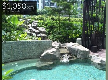 EasyRoommate SG - Condo Common Room for Rent (Eight Courtyards), Yishun - $850 pcm