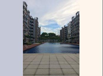 EasyRoommate SG - 3 bedroom Apartment for Cabin Crews  - Pasir Ris, Singapore - $550 pcm