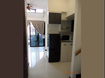 1 bedroom + Study Duplex Penthouse for Rent
