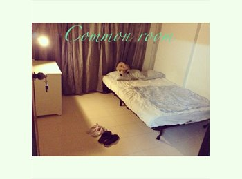 EasyRoommate SG - Common Room available for rent near Vivo City or Tiong Barhu Plaza, Singapore - $950 pcm