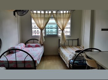 EasyRoommate SG - Sembawng Share Room Female, Singapore - $350 pcm