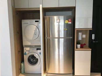 Brand new Condo Common Room for Rent
