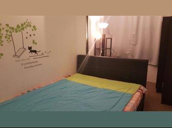 Cosy Room near Orchard Room, 5 min walk MRT, No Agent Fee