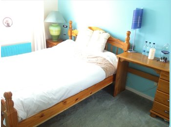 Single or Double Room for Professional Females