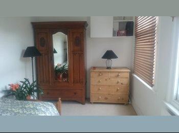 Single room, sharing warm, cosy, victorian flat