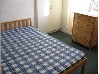Double Room available Bills inc