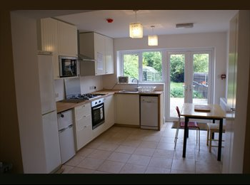 Top-notch room in a lovely house, off Kedleston Road