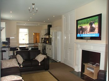 EasyRoommate UK - Luxury All Inclusive House-Share in Avenues Area, Botanic - £400 pcm