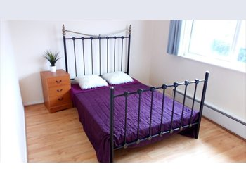 Friendly House Share in Basingstoke, Hants.