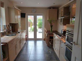 EasyRoommate UK - Lrg double room in a prof. houseshare - Cheltenham, Cheltenham - £450 pcm