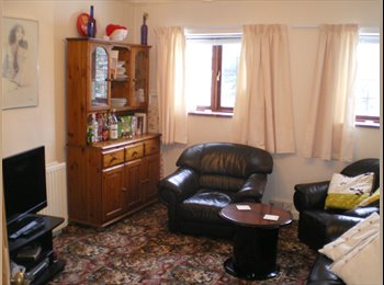 EasyRoommate UK -  room in Cheltenham  : professional female - Cheltenham, Cheltenham - £355 pcm