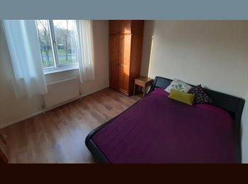EasyRoommate UK - Double Room within Friendly Houseshare, Basingstoke and Deane - £420 pcm