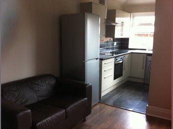 EasyRoommate UK - lovely student house sheffield 2, Sheffield - £347 pcm