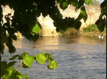 EasyRoommate UK - From 21st October Single Room with bunks in Bidford on Avon - Stratford-upon-Avon, Stratford-upon-Avon - £220 pcm