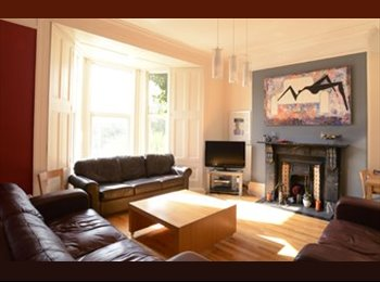 EasyRoommate UK - Lovely Art Filled House for Professionals & Mature students in Plymouth - Mutley, Plymouth - £400 pcm
