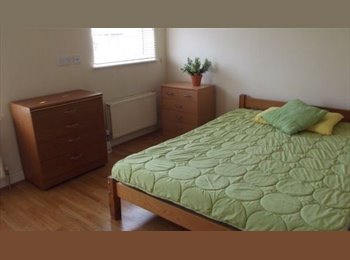 EasyRoommate UK - URGENT: Super double room Regent Circus, SN1 £435/m 11 Feb, Swindon - £435 pcm