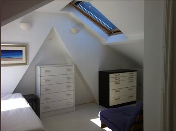 Ensuite double attic room in friendly working house