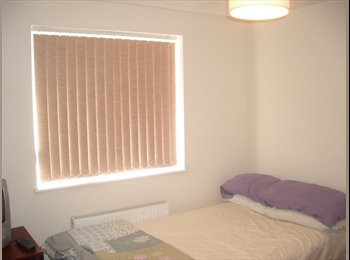 mon-fri room basingstoke
