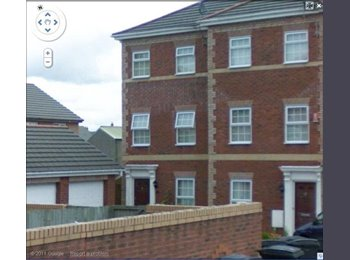 EasyRoommate UK - Excellent 2 single bedrooms in house share in Canton !!, Cardiff - £375 pcm