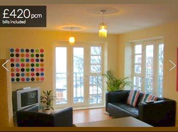 EasyRoommate UK - 1 double room in modern 2 bed apartment, Erdington - £420 pcm